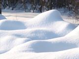 Fototapety Fresh snow cover, daytime light at winter