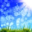 green grass bacground