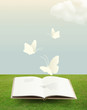 open book on grass with butterfly.paper cut style