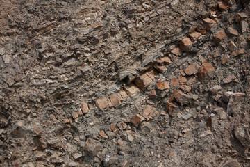 Fragment of brown soil