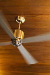 Contemporary brass Ceiling Fan
