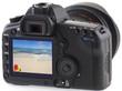 plage exotique sur écran appareil photo