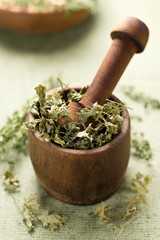 Dried parsley. Healthy aromatic herbs