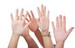 Diverse Hände strecken sich nach oben