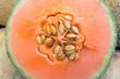 Detail of a honeydew melon