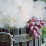"""USA, Utah, Salt Lake City, Close-up on red grapes in wooden barrel with tulle decoration"""