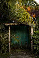 tropical doorway