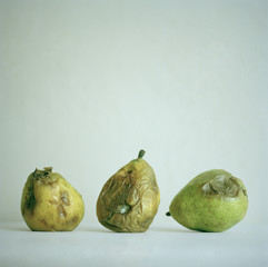 """Three old pears, studio shot"""