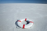 life preserver in the middle of nowhere