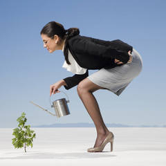 businesswoman watering a sapling in the desert
