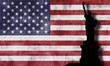 Bandera de Estados Unidos de América con la libertad