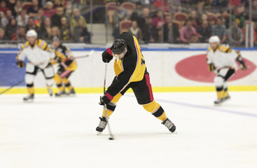 Ice Hockey Slap Shot