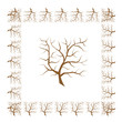 Frame from tree branches for your design