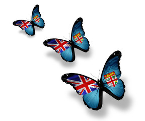 Three Fiji flag butterflies, isolated on white