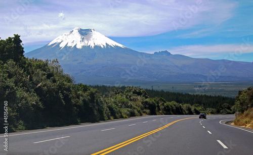 Highway to the Cotopaxi Volcano, The Andes, Ecuador - 45156760