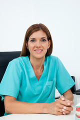 Female Dentist Smiling At Desk