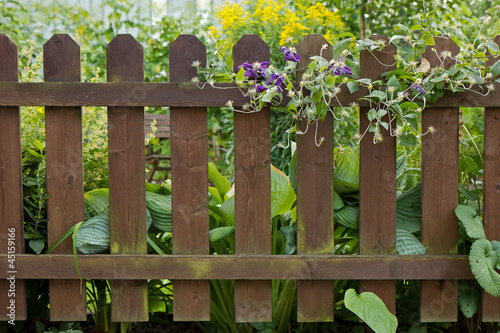 Wooden fence at a verdant garden full of plants
