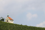 Small chapel and vineyard