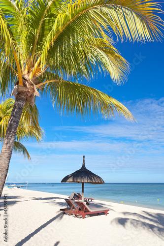 raj wakacje pod palmami