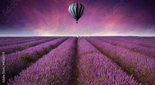 Stunning lavender field landscape Summer sunset with hot air bal - 45168939