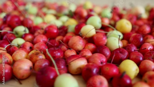 paradise apples, motion dolly