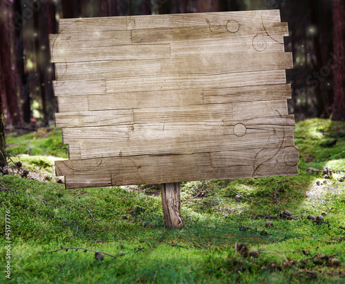 canvas print picture Sign in the Forest