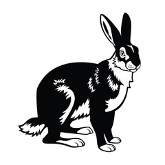 sitting hare black and white image