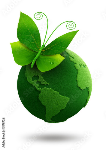 green butterfly sitting on green earth