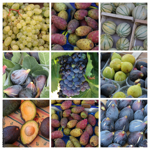 Purple and green fruits collage
