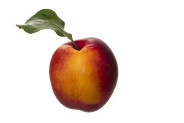 nektarine mit blatt