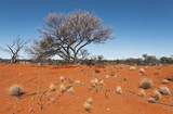 the red center in the australian outback