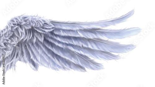 fototapete engelsfl gel fl gel zeichen symbol symbol pixteria. Black Bedroom Furniture Sets. Home Design Ideas