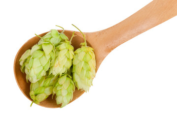 Hops in a wooden spoon