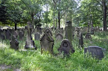 Old English Graveyard