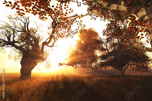 Beautiful Autumn Nature Scene 3D render
