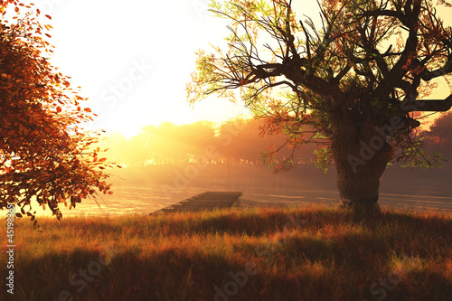 Autumn Sunset / Sunrise at Lake 3D render