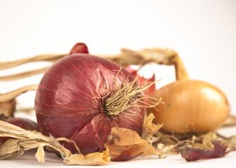 raw dryed onion