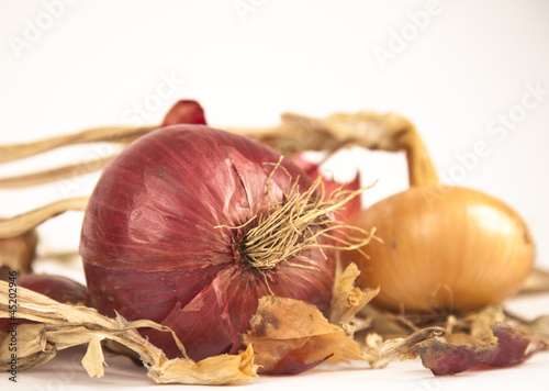 raw dryed onion