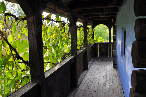 Wooden veranda with grape leaves