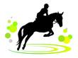 Pferdesport - 1