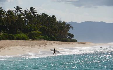 Surfer in Hawaii