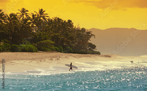 Fototapeten,hawaii,surfen,strand,meer