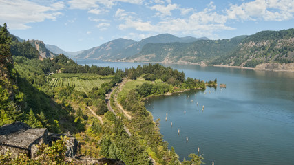 Vineyard & Orchards in Columbia River Gorge