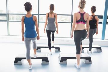 Female aerobic group stepping