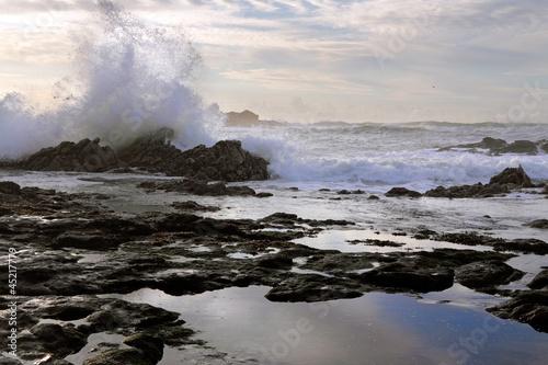 Autumn seascape © Zacarias da Mata