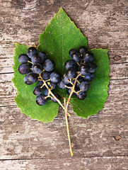 Grapes With Green Leaf