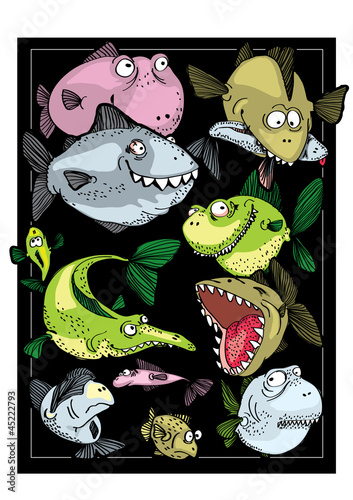 Predatory fishes