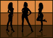 Silhouettes of models