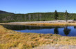 Scenic landscape in Yellowstone national park