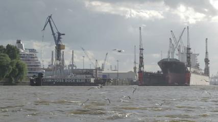 Hamburg port. Cargo ship, gulls.